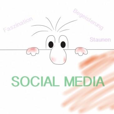 Faszination Social Media
