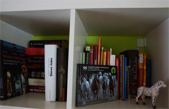 Mein Bücherregal Blogparade (3)