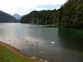 Zwischen Kitsch und Magie - Königsschlösser und Alpsee